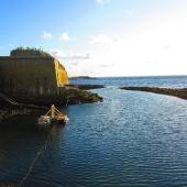 Le port à marée basse